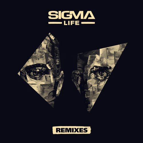 Slow Down (Calyx & TeeBee Remix)